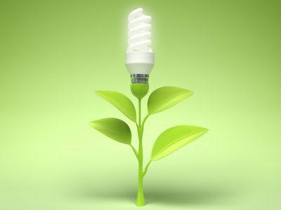 South Carolina Green Power